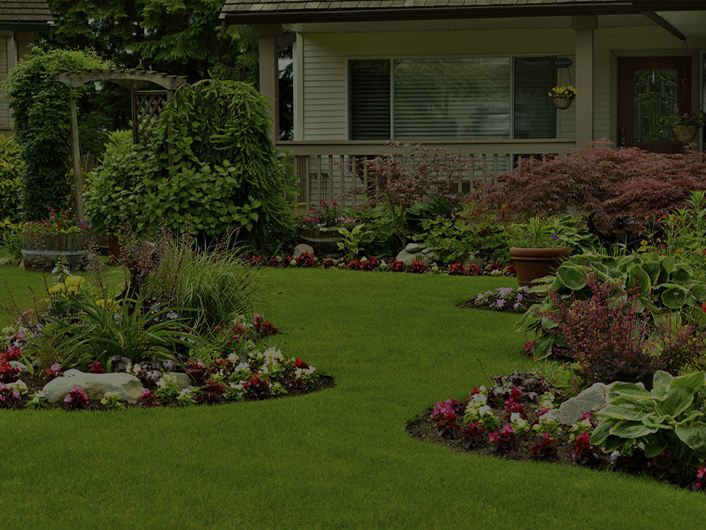 Burlington Landscape Design